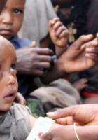 Agir maintenant pour prévenir les insécurités alimentaires de demain Par Xavier Compain
